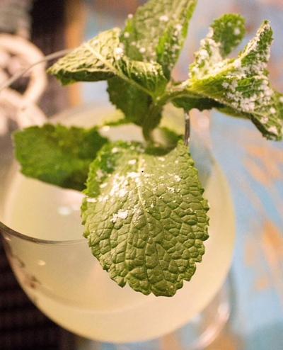 cocktail-class-mint